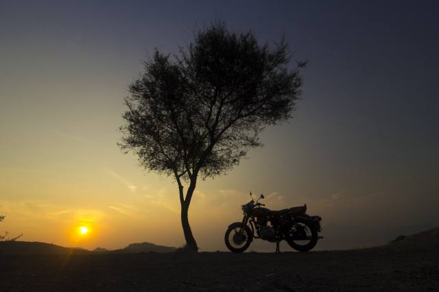 tree, motorcycle, sunrise, Composition