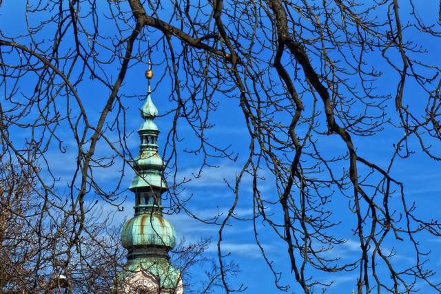 the Church, the bell tower, branches, the sky