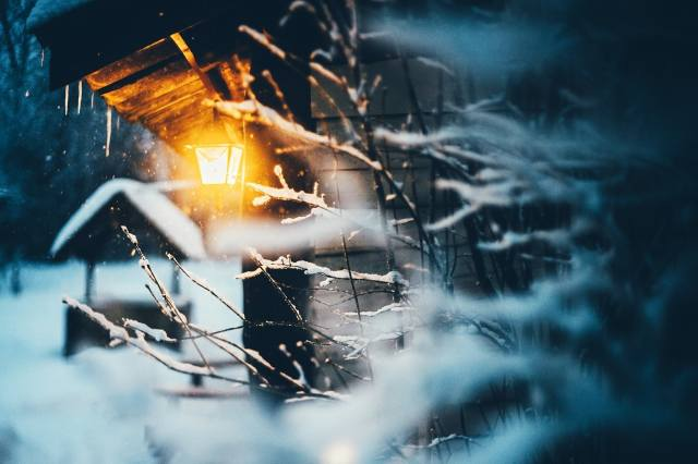 зима, вечер, фонарь, лес