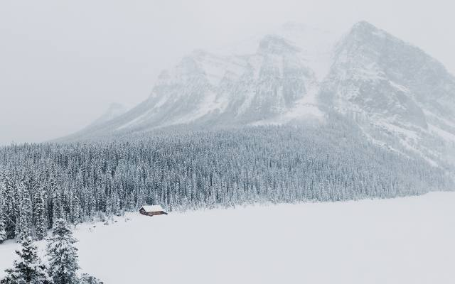 zima, sníh, les, hora, vrchol, domeček