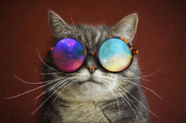 Cool Painting, glasses, cat