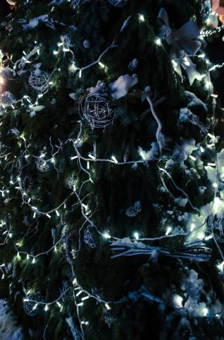 vánoční strom, svátek, Nový rok, atmosféra, krásně