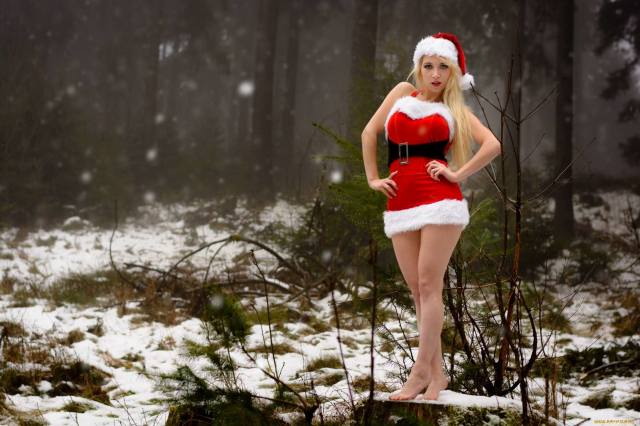 New year, holiday, the snow maiden
