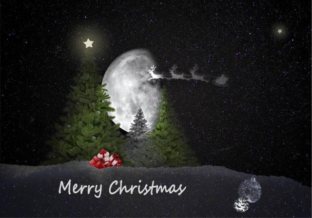 the moon, Deer, ate, gifts, snow, Christmas
