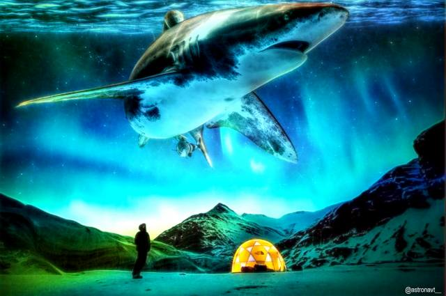 fantasy, mystery, shark, sea, the ocean, the sky, mountains, сюрреальность, creative
