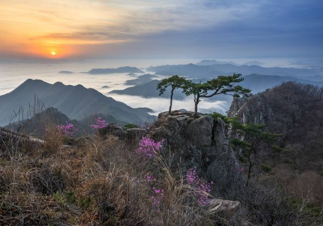 Jižní Korea, mraky, stromy, krajina, hory, příroda, mlha, skály, vrcholy