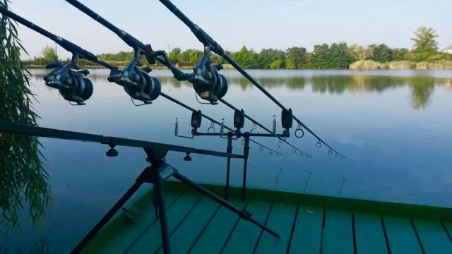 rybaření, rybník