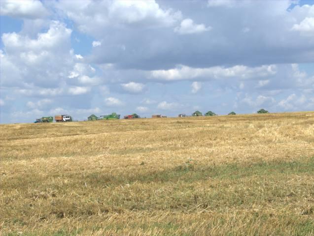 Сбор урожая, field, harvesters, the sky, clouds