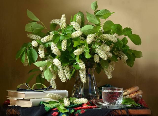 table, shawl, pitcher, branches, cherry, books, glasses, чашка. напиток, бублики