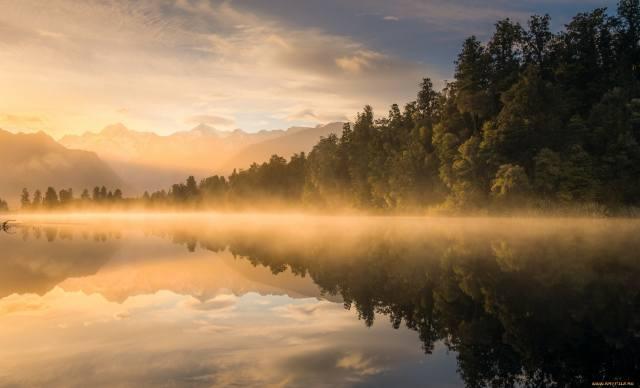 лес, река, туман