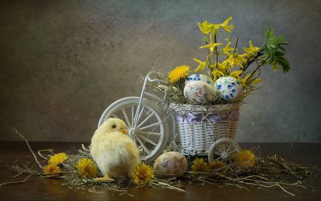 flowers, bike, holiday, EGGS, Easter, hay, dandelions, chicken, Composition