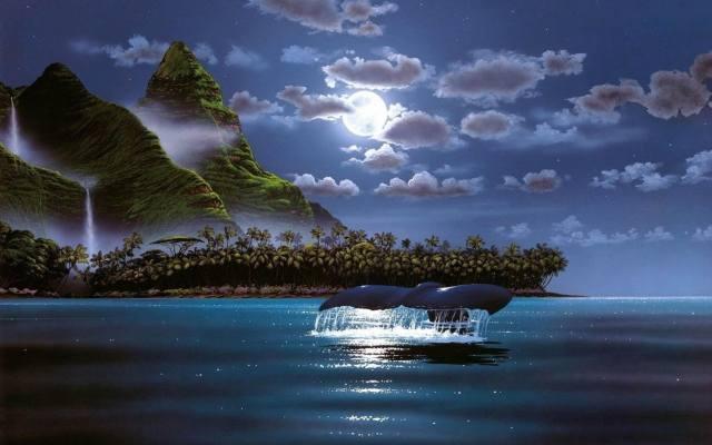 креатив, мистецтво, картина, природа, краєвид, ніч, нічний, тропіки, тропічний