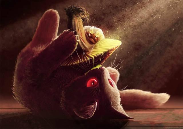 cat, mushroom, art, creative