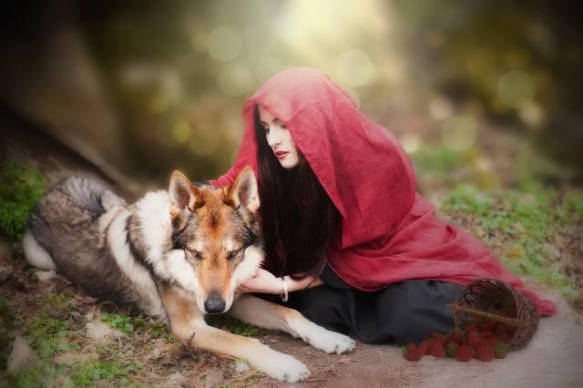 holka, vlk, obraz, tvůrčí