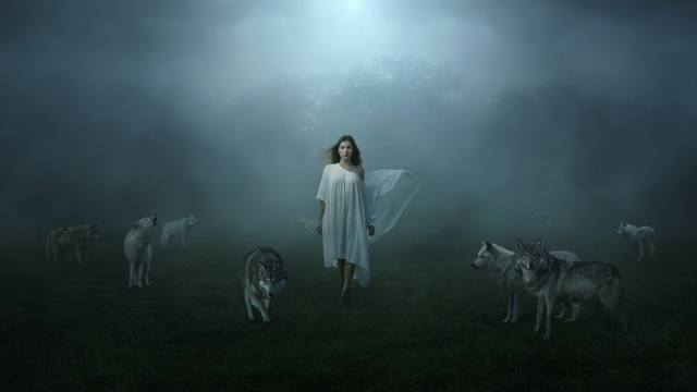 wolves, girl, photo, creative