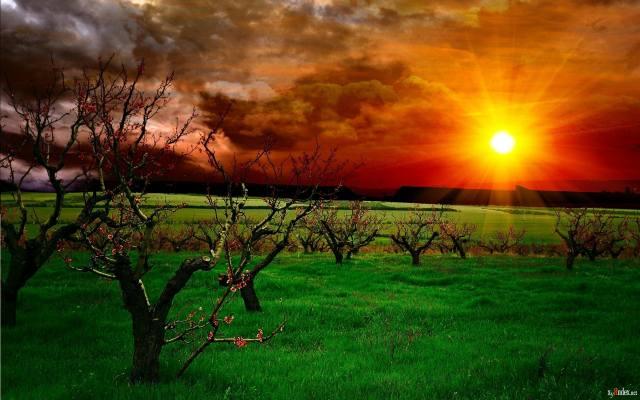 sunset, gallery, desktop