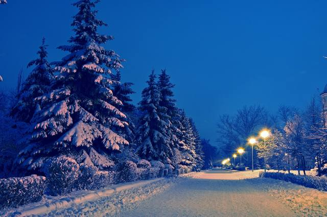 evening, winter, snow, Alley, Park, beautiful