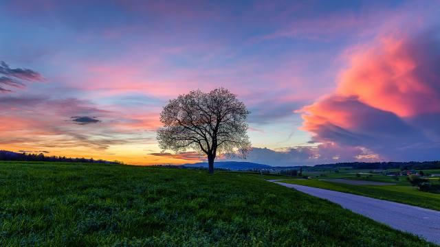 небо, пейзаж, Швейцария, поле