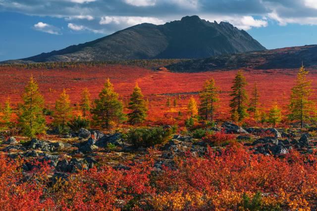autumn, landscape, mountains, nature, stones, trees, Владимир Рябков, Колыма