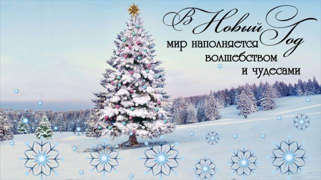 Nový rok, les, vánoční strom, zima, kouzlo, svátek