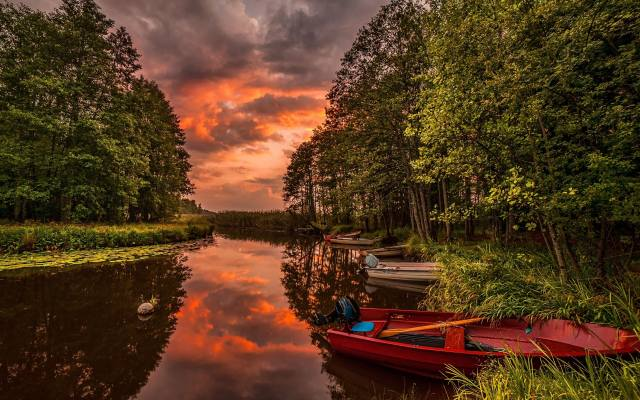 nature, landscape, forest, trees, river, the shore, boats, grass, sunset