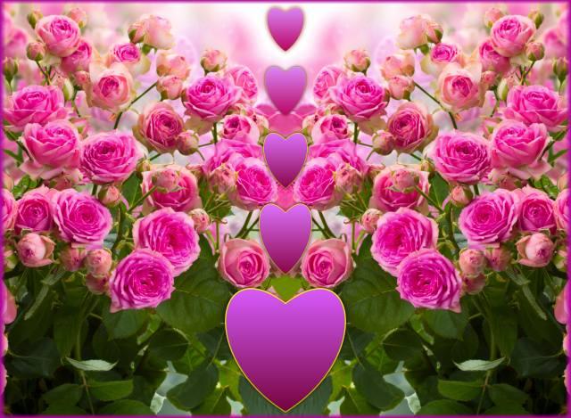 flowers, hearts, Love