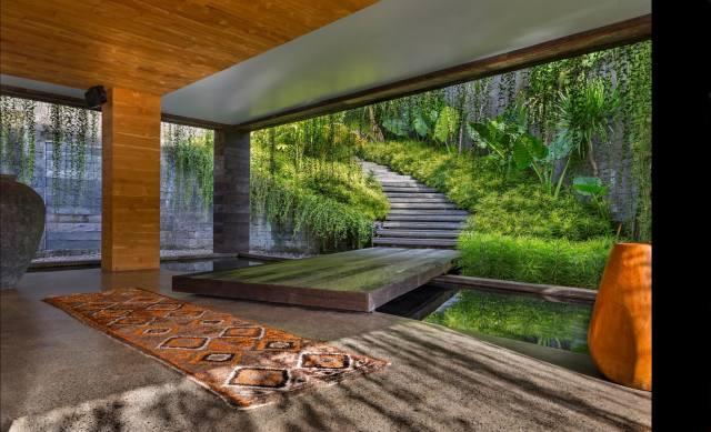 интерьер лестницы, interiér, растения.ковры