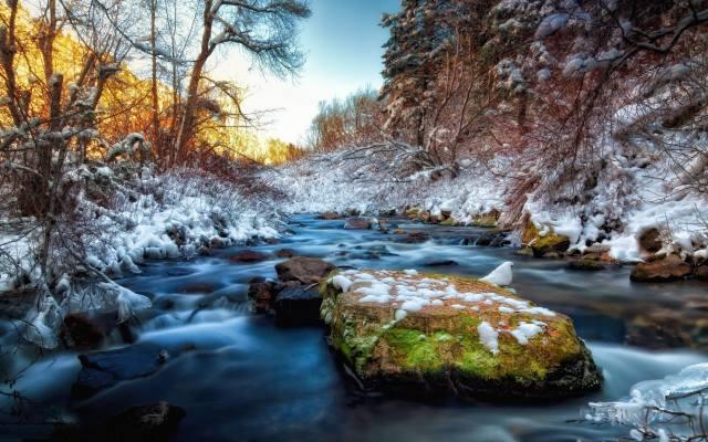 зима, каміння, сніг, струмок, дерева