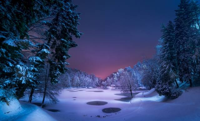 night, the pond, forest, blue, frozen lake, Park