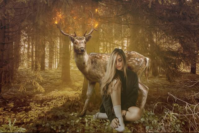 girl, deer, forest, sunset, photomanipulation