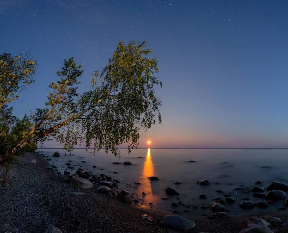 the sky, landscape, night, nature, the lake, stones, tree, the moon, shore