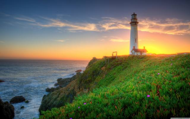 coast, lighthouse, the sky, Pigeon Point Lighthouse, California, grass, nature
