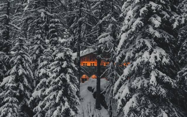 zima, dům a pohodlí, les, hory