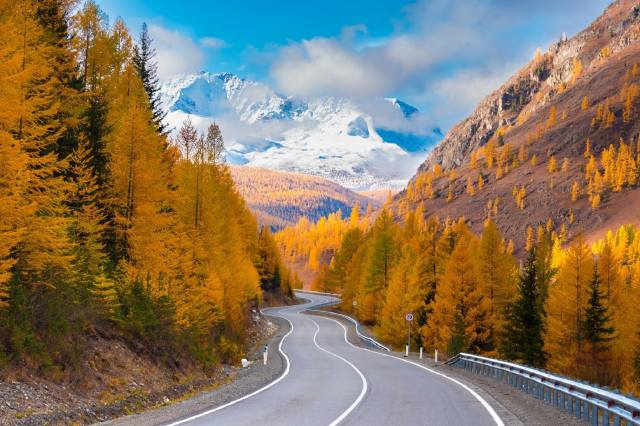 nature, road, Altai, mountains, autumn