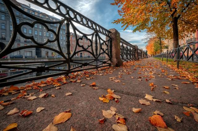 autumn, leaves, the city, river, street, home, Peter, sink, St. Petersburg
