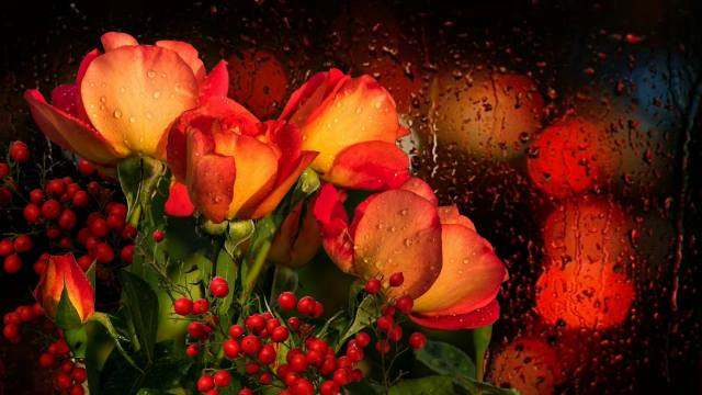 flowers, rose, branches, berries, bouquet, glass, drops, water