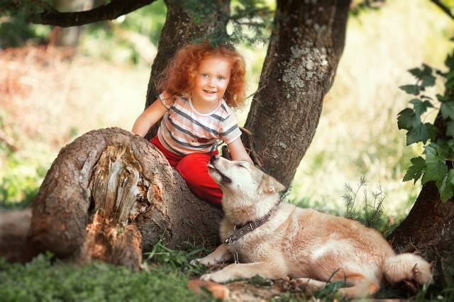 child, girl, red, curls, Animal, dog, dog, nature, summer