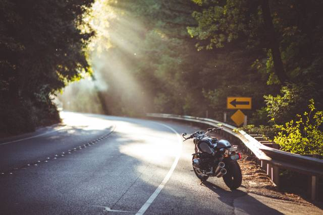 road, the sun, trees, shadow, bmw