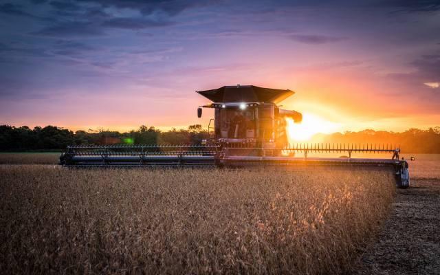 Fendt Ideal, 4K, wheat harvesting, 2020 combines, combine, sunset