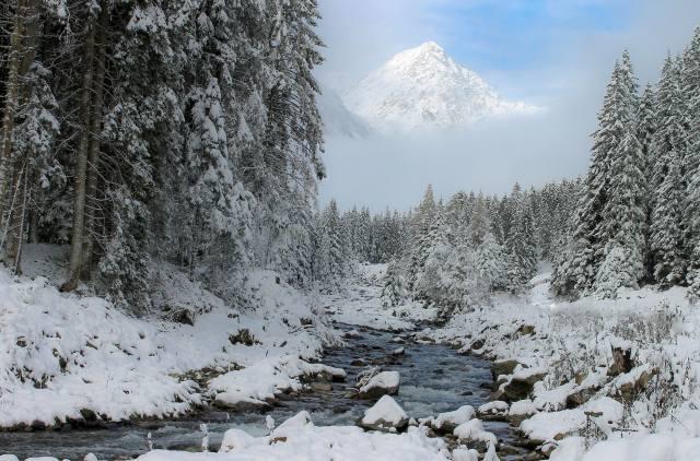 winter, snow, nature, top