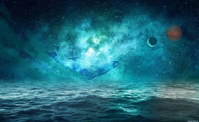 море, кіт, планети