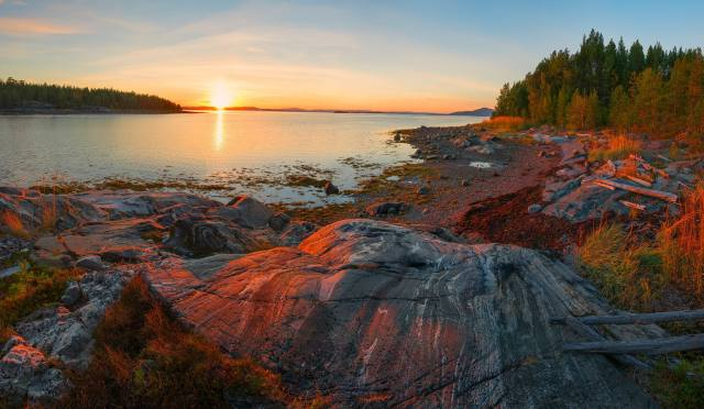 forest, the sky, the sun, dawn, shore, morning, the pond, Rocky shore