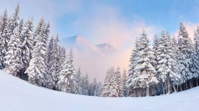 nature, landscape, mountains, forest, trees, ate, winter, snow