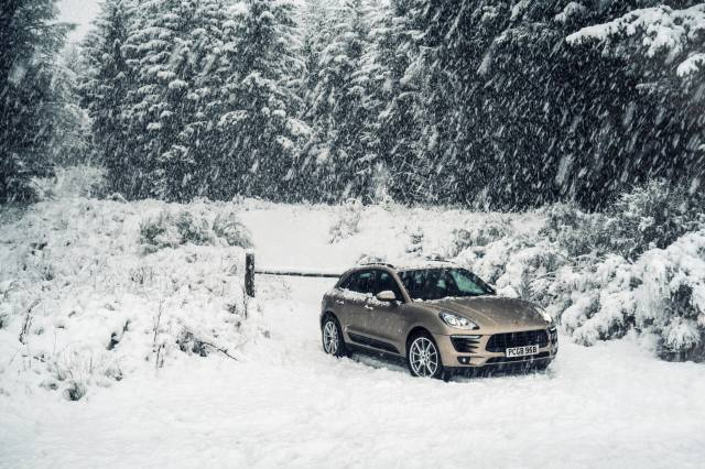 les, sníh, Porsche, les, porsche, Auto, sníh, zimní