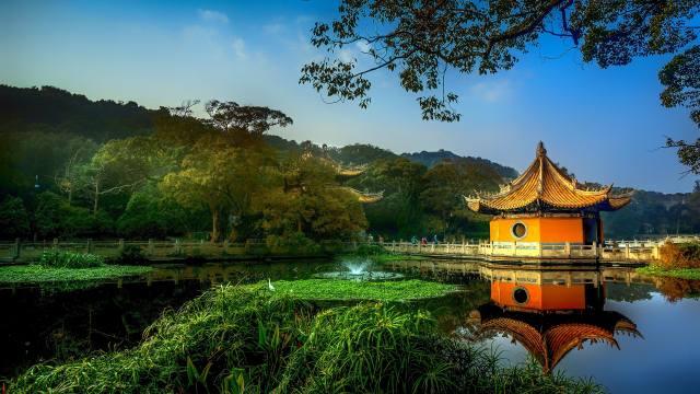 парк, альтанка, дерева, озеро, Китай