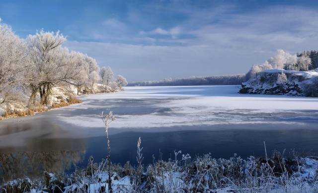 nature, landscape, river, the shore, trees, grass, winter, snow
