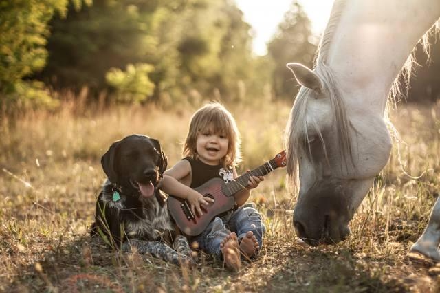 Agnieszka Gulczynska, child, boy, dog, horse, horse, friends, nature, guitar