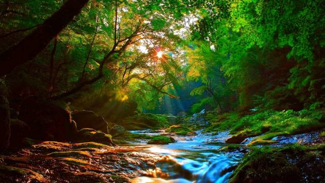 природа обои, krajina