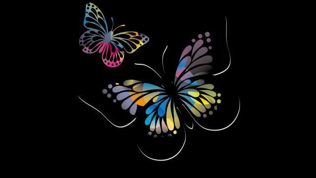 butterfly, black, background
