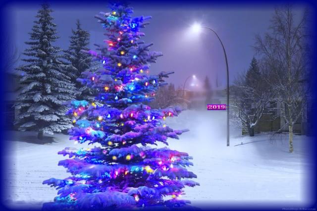 вечір, сніг, ялинка, ілюмінація